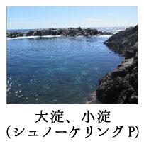ninki_spot_24
