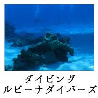 ninki_spot_4_3